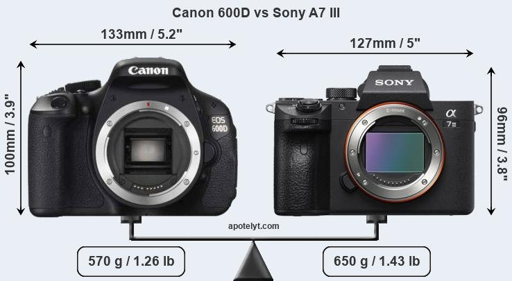 Size Canon 600D vs Sony A7 III