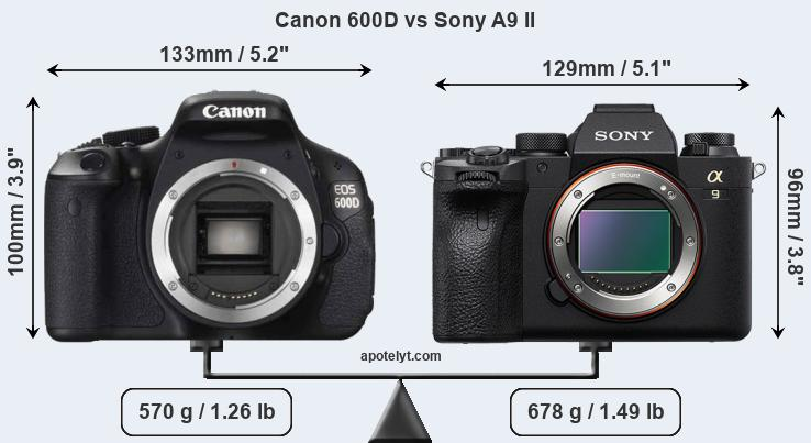 Size Canon 600D vs Sony A9 II