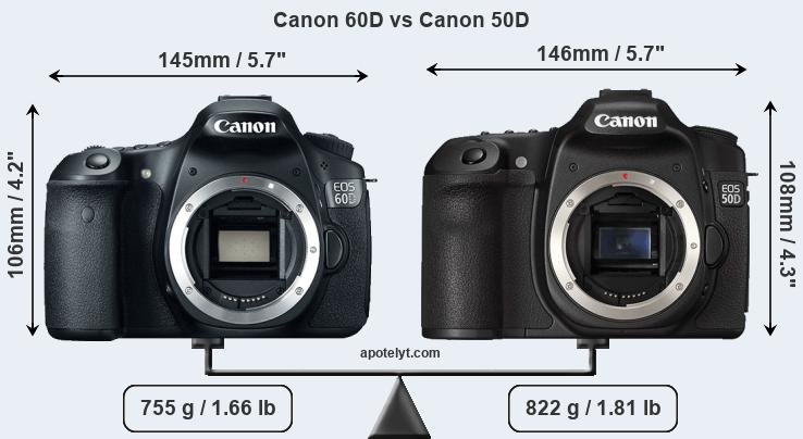 Canon 60D and Canon 50D sensor measures