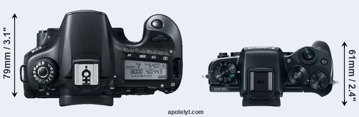 Canon 60D vs Canon M5 Comparison Review
