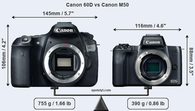 Canon 60D vs Canon M50 Comparison Review