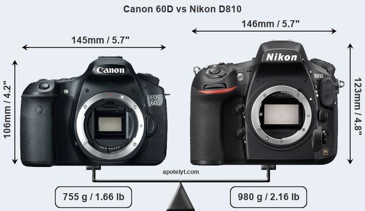 Canon 60D vs Nikon D810 Comparison Review