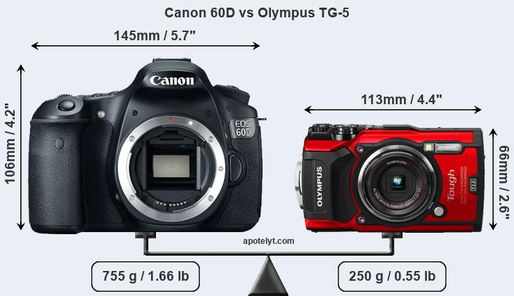 Size Canon 60D vs Olympus TG-5