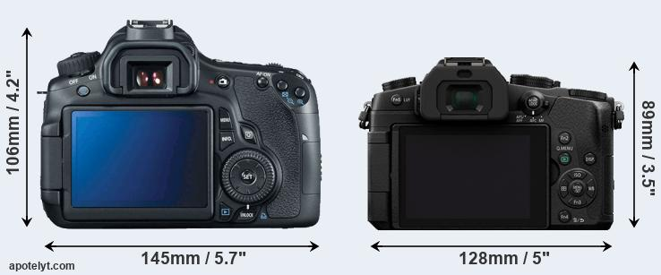 60D and G80 rear side