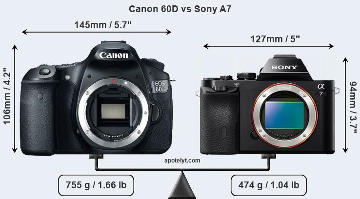 Size Canon 60D vs Sony A7