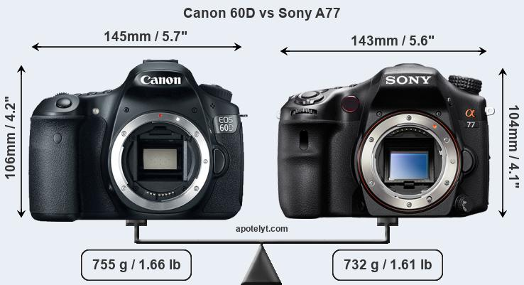 Size Canon 60D vs Sony A77