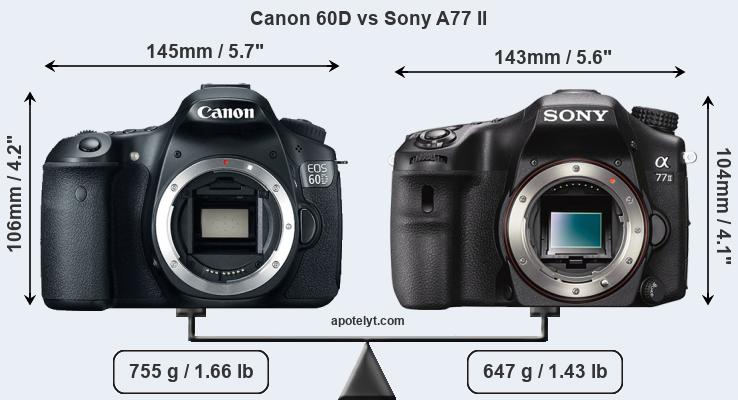 Size Canon 60D vs Sony A77 II