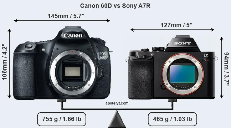 Size Canon 60D vs Sony A7R