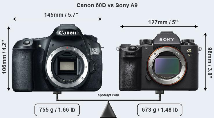 Size Canon 60D vs Sony A9