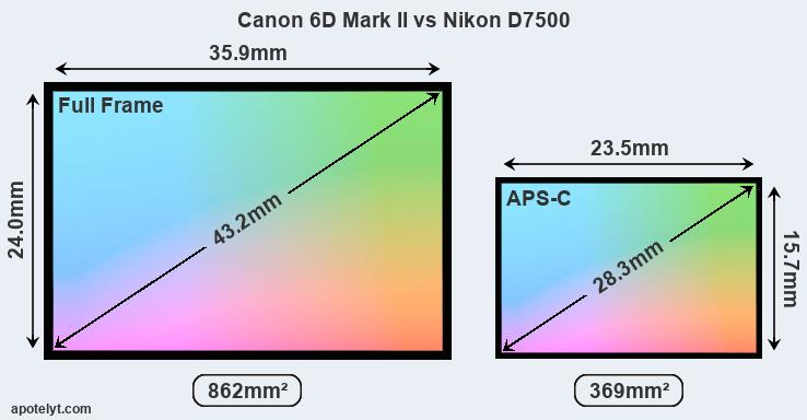 Canon 6D Mark II vs Nikon D7500 Comparison Review