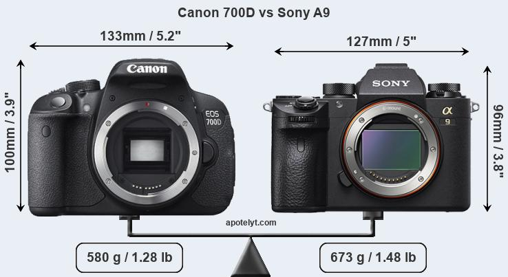 Size Canon 700D vs Sony A9