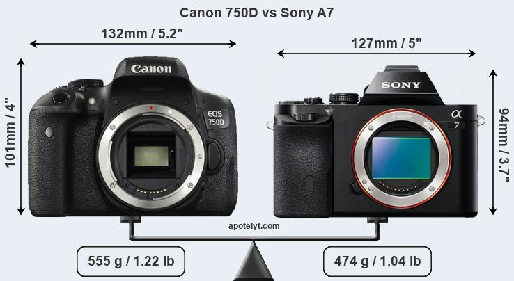 Size Canon 750D vs Sony A7