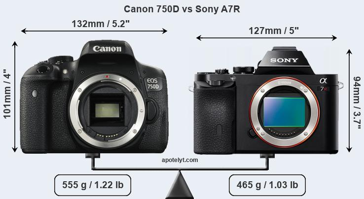 Size Canon 750D vs Sony A7R
