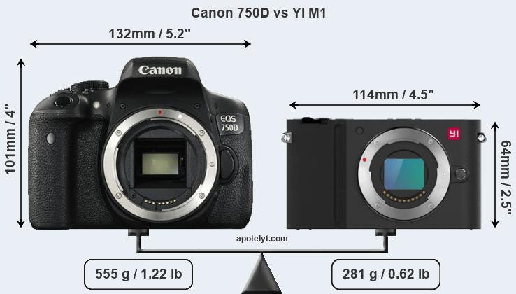 Compare Canon 750D and YI M1