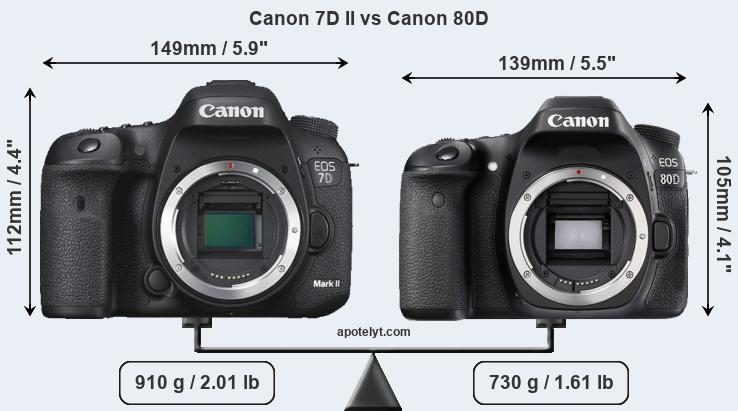 Canon 7D II and Canon 80D sensor measures