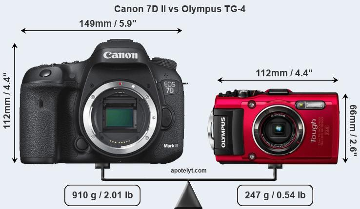 Size Canon 7D II vs Olympus TG-4
