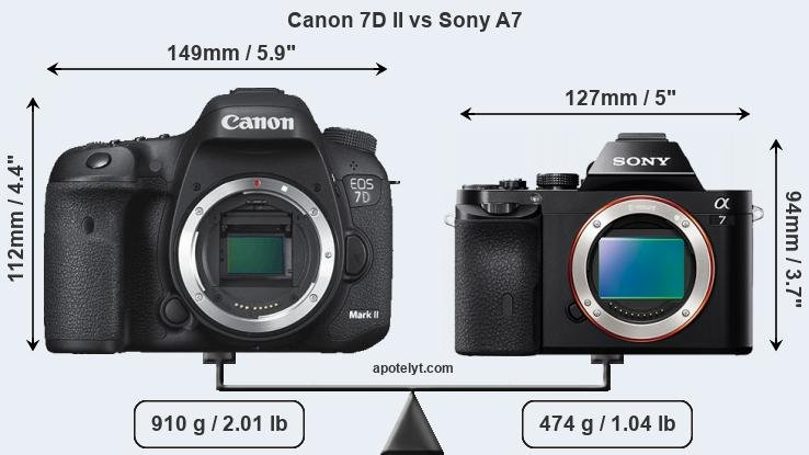 Size Canon 7D II vs Sony A7