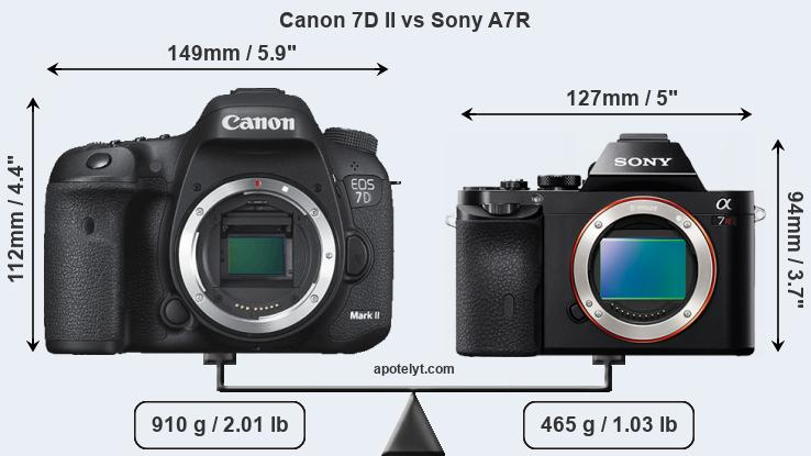 Size Canon 7D II vs Sony A7R