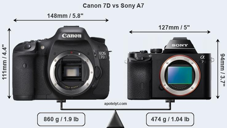 Size Canon 7D vs Sony A7