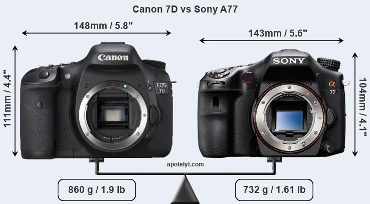 Size Canon 7D vs Sony A77