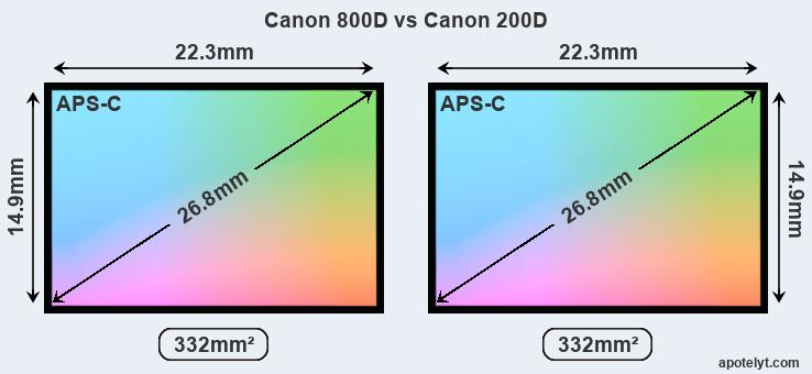 Canon 800D and Canon 200D sensor measures