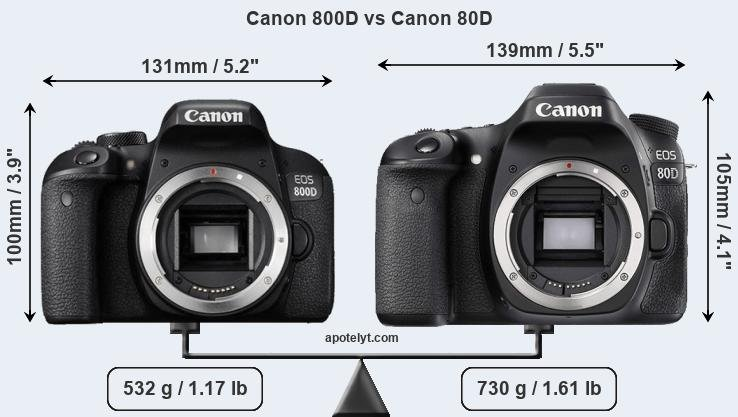 Canon 800D and Canon 80D sensor measures