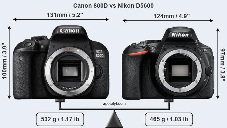 Canon 800D and Nikon D5600 sensor measures