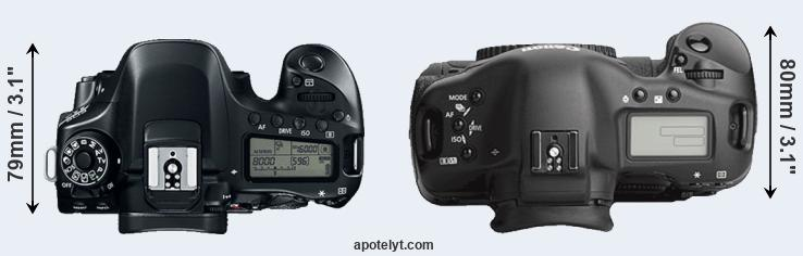 80D versus 1Ds Mark III top view