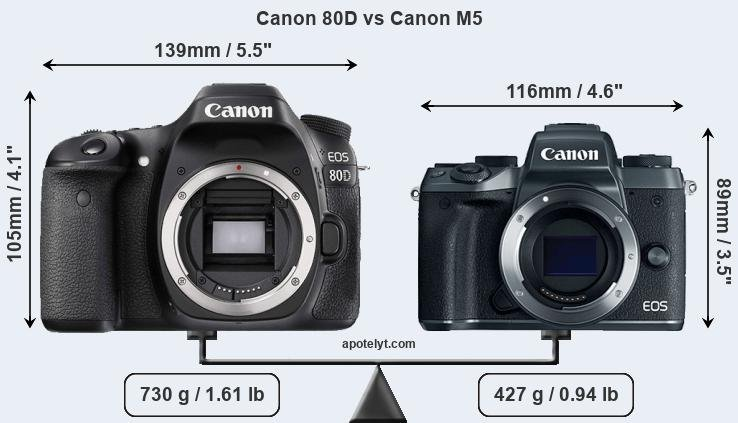 Canon 80D and Canon M5 sensor measures