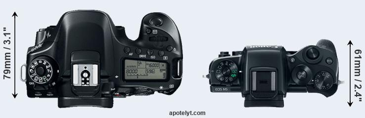 80D versus M5 top view
