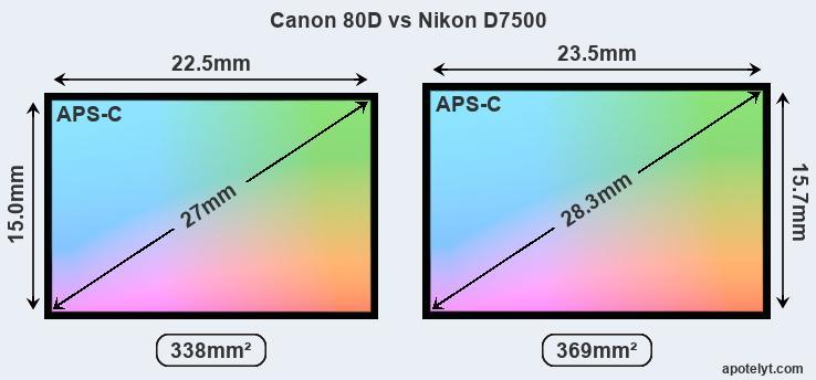 https://www.apotelyt.com/abc-i3/canon-80d-vs-nikon-d7500-sensor-a.jpg