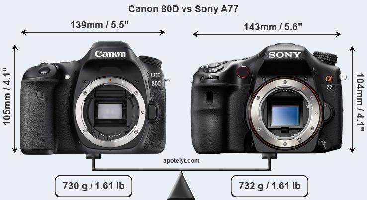 Size Canon 80D vs Sony A77
