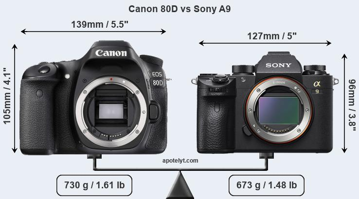 Size Canon 80D vs Sony A9