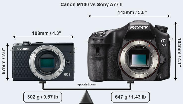 Size Canon M100 vs Sony A77 II
