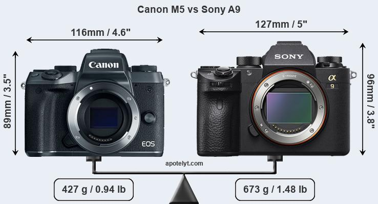 Size Canon M5 vs Sony A9