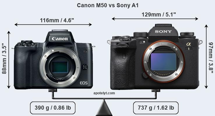 Size Canon M50 vs Sony A1