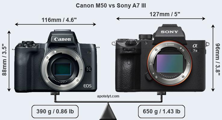 Size Canon M50 vs Sony A7 III