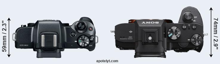 Canon M50 vs Sony A7 III Comparison Review