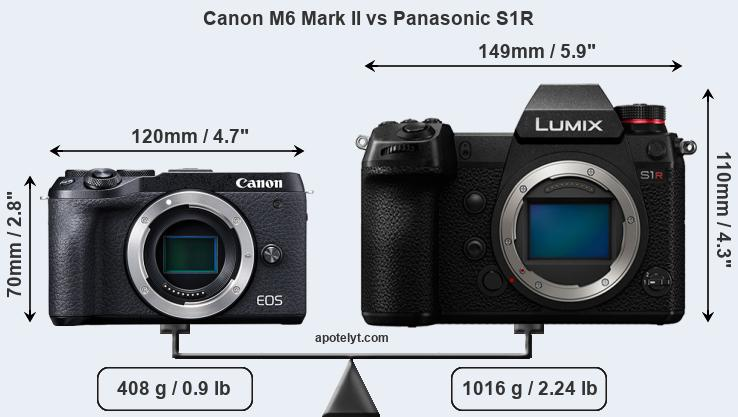 Size Canon M6 Mark II vs Panasonic S1R