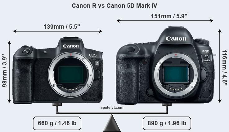 canon r vs canon 5d mark iv comparison review
