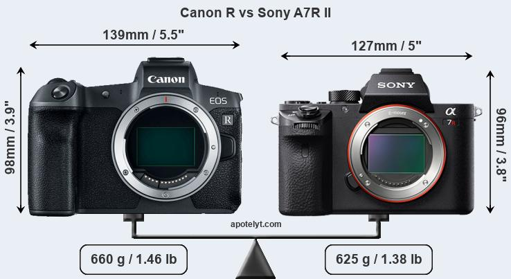 Canon R Vs Sony A7r Ii Comparison Review