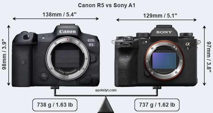 Size Canon R5 vs Sony A1