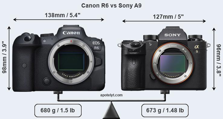 Size Canon R6 vs Sony A9