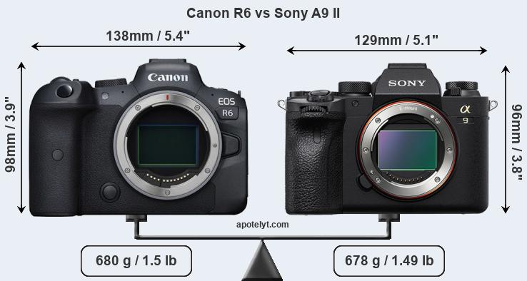 Size Canon R6 vs Sony A9 II