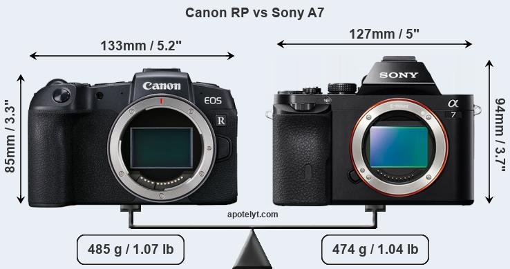 Size Canon RP vs Sony A7