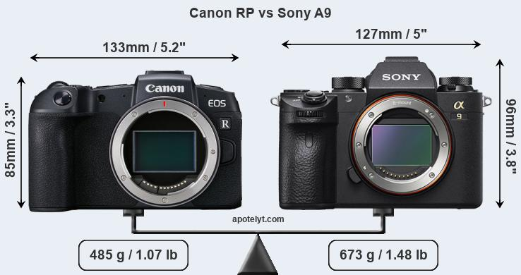 Size Canon RP vs Sony A9