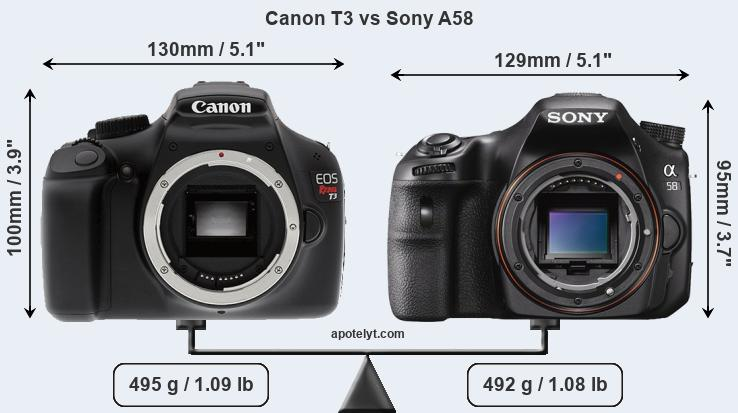 Size Canon T3 vs Sony A58