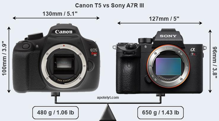Size Canon T5 vs Sony A7R III