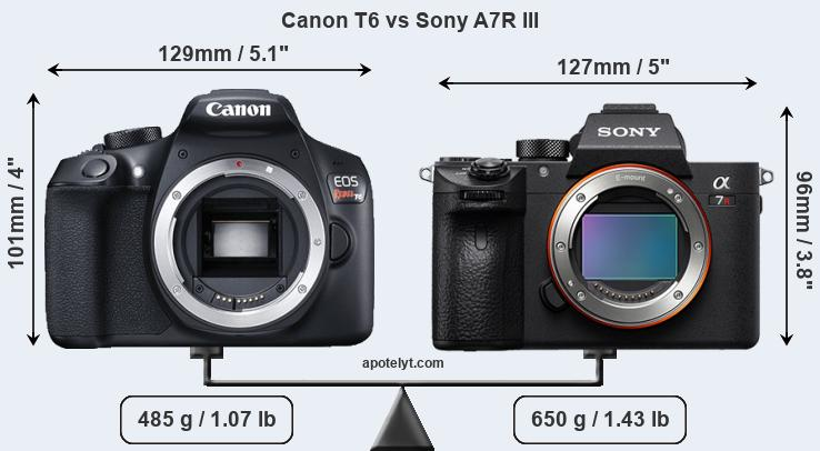 Size Canon T6 vs Sony A7R III