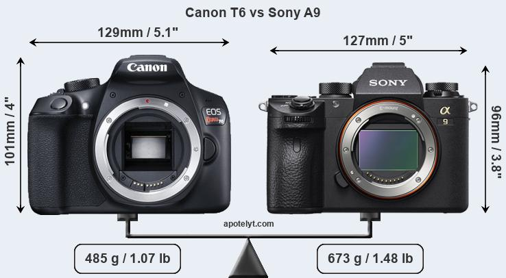 Size Canon T6 vs Sony A9